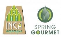 Inca & Spring